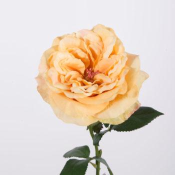 open zijden roos geel