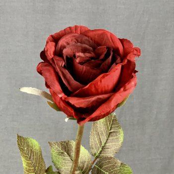 rode kunst roos