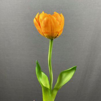kunst tulp