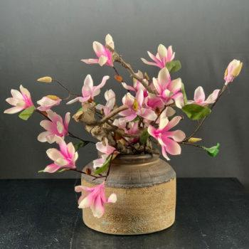 Magnolia compleet in vaas
