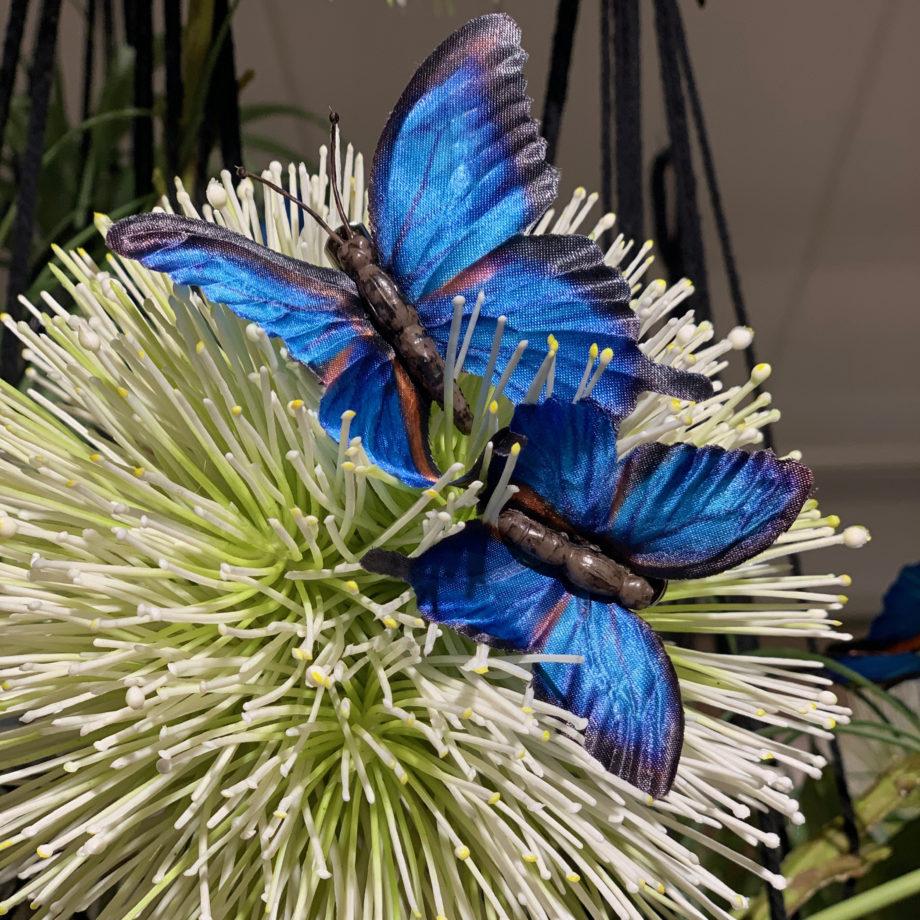 kunst vlindertjes