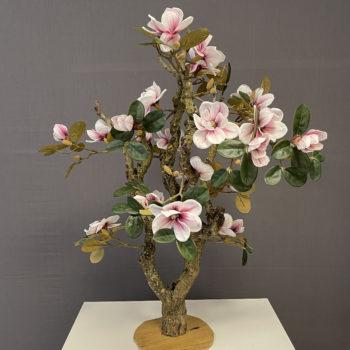 zacht roze Magnolia