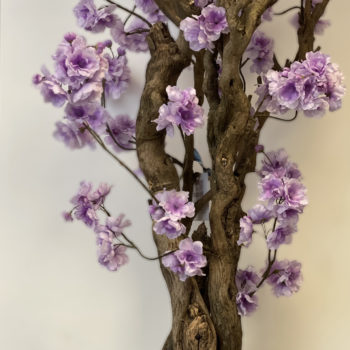 lila bloesemboom